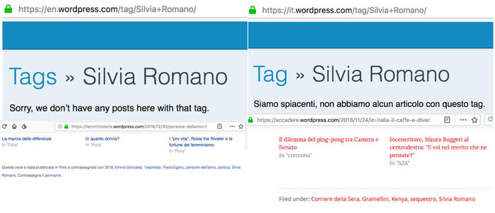 SilviaRomano_search_italianlanguage.jpeg